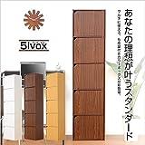 組み立て簡単 A4サイズ収納可能 扉付きカラーボックス 5ivox フィボックス 収納ボックス