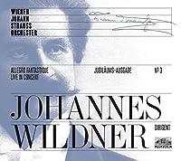 Strauss: Allegro Fantastique C