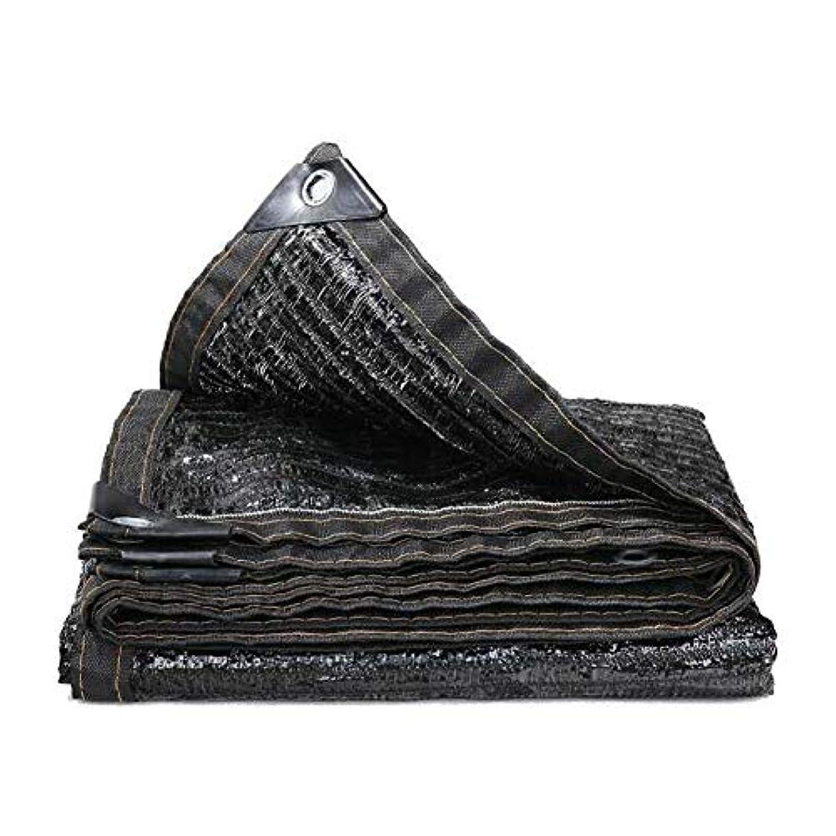 磨かれた超越するパラダイスDALL ターポリン シェーディングネットバイザー布ガーデン屋外サンメッシュサンプロテクショングロメット折りたたみ耐久性 (Color : Black, Size : 2×4m)
