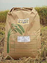 51Q49uy0xSL. SL250  - 佐賀県産ヒノヒカリとゆーお米を通販にて購入