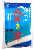 平成28年産 無洗米 島根県産コシヒカリ白米5kg (島根県雲南市産米使用)