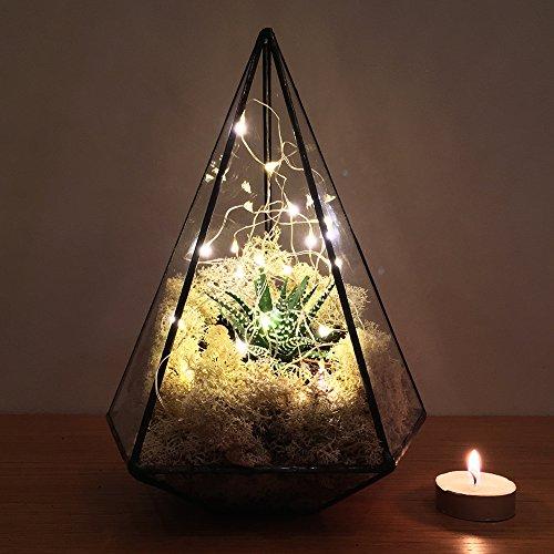 """テラリウム–Aztec Jewel with Faux多肉植物植物とオプションLEDライト9.5""""高 Fully assembled, faux succulent plants, LED lights JEWEL"""