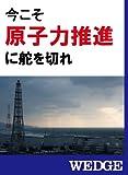 今こそ原子力推進に舵を切れ WEDGEセレクション