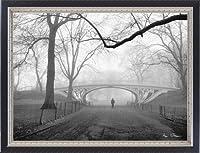 ポスター アンリ シルバーマン Gothic Bridge、 Cental Park、 NYC 額装品 マッキアフレーム-S(ブラックシルバー)