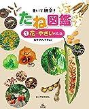 <1>花・野菜のたね ヒマワリ・イネほか (まいて観察! たね図鑑) 画像