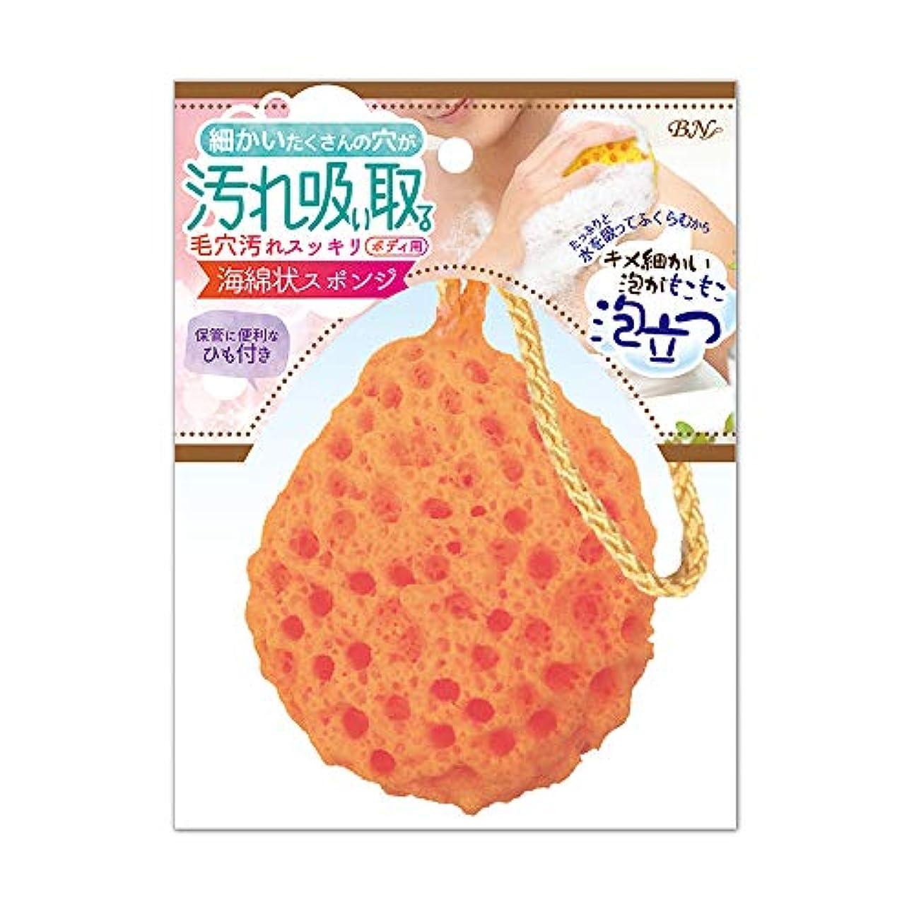 有望ハブブ途方もないBN 海綿状スポンジ KAM-02 オレンジ (1個)