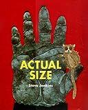 Actual Size (Bccb Blue Ribbon Nonfiction Book Award (Awards))