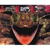 美顔礼讃―両生爬虫類顔づくし