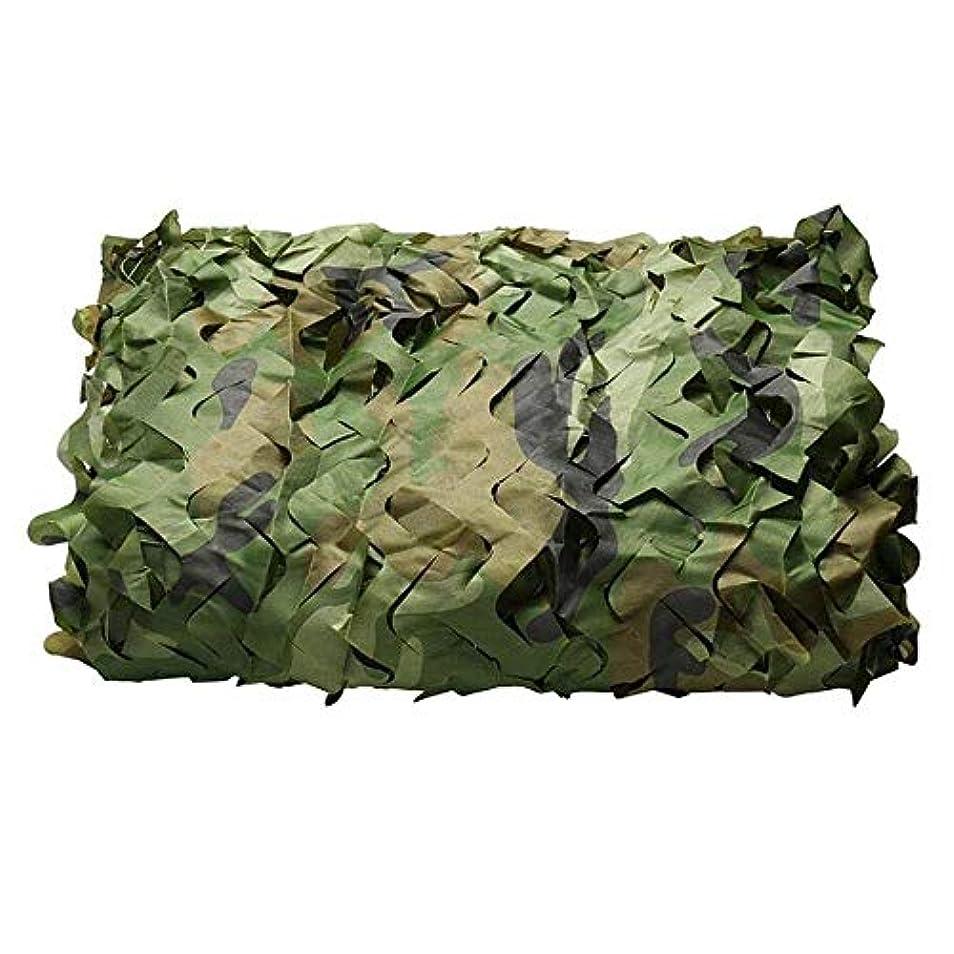 二層手当大脳迷彩ネット 迷彩狩猟射撃ネット隠す軍隊オックスフォード生地迷彩ネット 屋外釣り軍用車両の庭の装飾 (サイズ さいず : 4*10M(13.1*32.8FT))