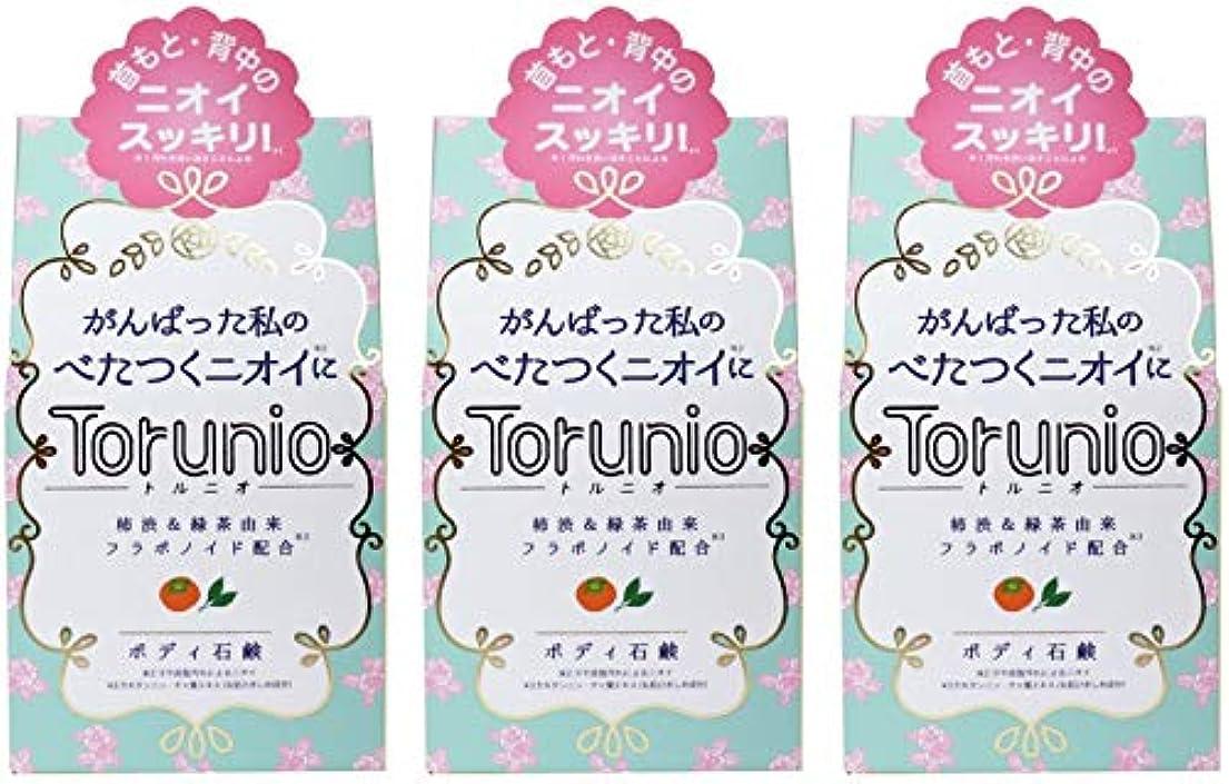 発揮する講義早く【まとめ買い】Torunio(トルニオ)石鹸 100g【×3個】