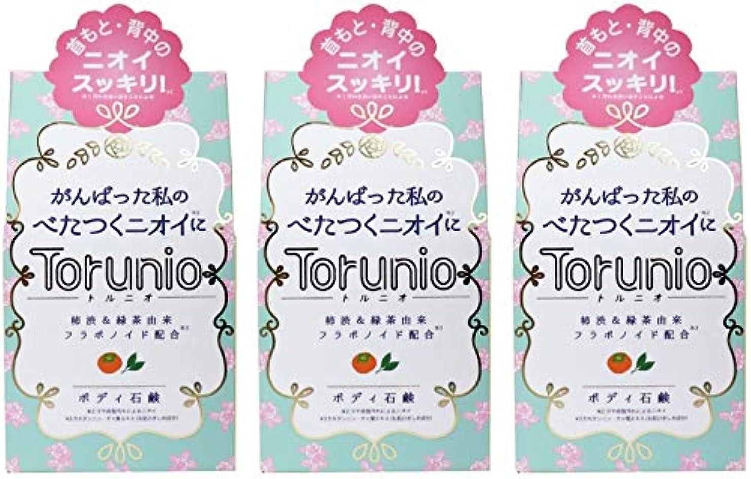 混沌踏みつけ途方もない【まとめ買い】Torunio(トルニオ)石鹸 100g【×3個】