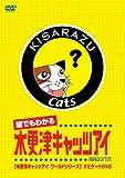 猫でもわかるキャッツアイ 木更津キャッツアイワールドシリーズ ナビゲートDVD 画像