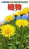 小学館の図鑑NEOポケット 植物 (小学館の図鑑NEO POCKET)