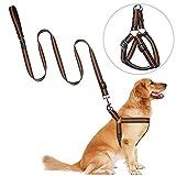 犬用ハーネス リードセット, PETBABA(ペットババ) 犬ハーネス 胴輪 引っぱり防止 中型犬 大型犬 反射可 調節可能 愛犬ランニング/訓練/しつけ/散歩用 事故防止/交通安全グッズ-オレンジ