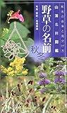 野草の名前秋・冬―和名の由来と見分け方 (山渓名前図鑑)