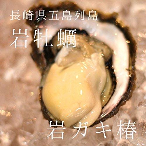 岩牡蠣 椿 長崎県五島列島 計10個(約170〜230g/1個)築地直送 ギフト お中元 ツバキ つばき 鮮魚 養殖岩牡蠣 生食用