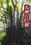 九州の巨樹―100の絶景〈2〉