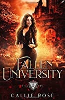 Fallen University: Year Two: A Reverse Harem Paranormal Romance