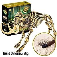 Coerni 恐竜玩具 サイエンス教育ディグキット 恐竜 化石掘削キット 男の子 女の子 キッズギフト 19.3 × 22.3 × 5.5cm マルチカラー RMNW46J