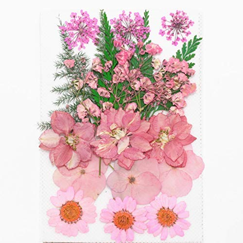 DIY用 押し花 ドライフラワー ブリザードフラワー ピンクミックス