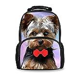 Best Bagpacks - Coloranimal Cute Animal Yorkshire Terrier Dog Backpack Review