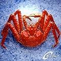 . 浜ゆで タラバガニ 姿 ( フローズン チルド ) 1.8kg前後 たらばがに 蟹  約5人前~  ギフト 贈答  海鮮市場 北のグルメ