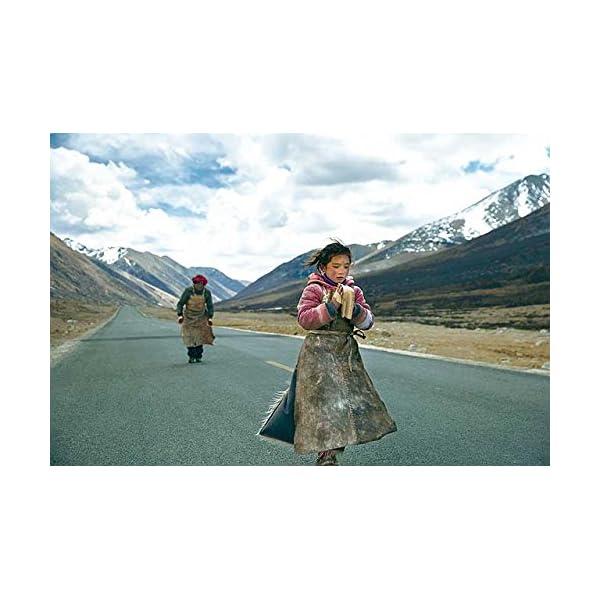 ラサへの歩き方 祈りの2400km [DVD]の紹介画像2
