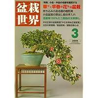 盆栽世界 2009年 03月号 [雑誌]