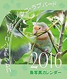 コザクラインコ・ボタンインコ  ラブバード鳥写真カレンダー 2016 (CDサイズ。ワンタッチで卓上にも壁掛けにもなる3Wayカレンダー。)