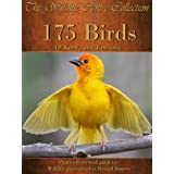 175 Birds of Kenya and Tanzania (The Wildlife Centre Collection) (English Edition)