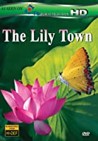 Lily Town [DVD] [Import]