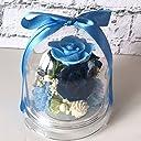 プリザーブドフラワー ギフト ラッピング ドーム 青 バラ 誕生日 結婚祝い 父の日 男性へ チャーム(ブルー)