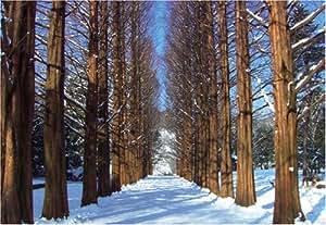 冬のソナタ・ロケ地より アートパズルシリーズ 300ピース 風景 冬の南怡島 メタセコイヤ並木 300-106