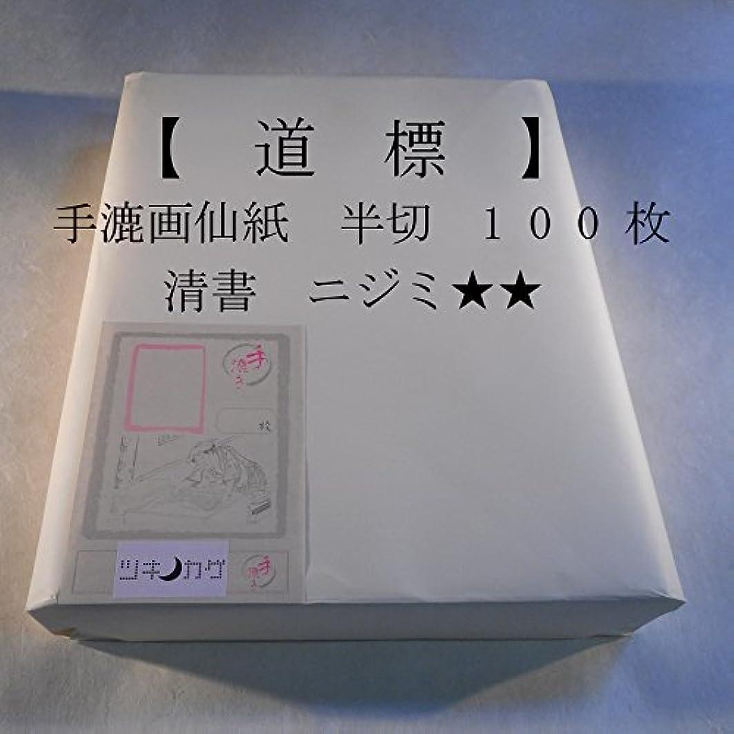 フロント不規則性脱臼する手漉画仙紙 半切【道標】(100枚)【ツキノカゲ】