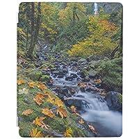 ipad mini123 ケース おしゃれ レザー ipad mini1スマートカバー スタンドタイプ オートスリープ機能付き飢餓の入り江の滝に沿う秋色