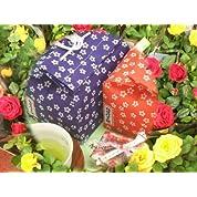 【遅れてごめんね】【母の日ギフト】桔梗信玄餅(6個入り)とカーネーションの5号鉢のセット