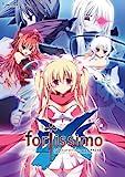 fortissimo EXS//Akkord:nachsten Phase 初回版