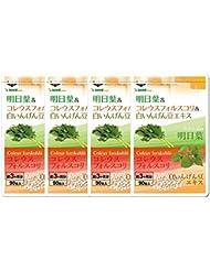 明日葉&コレウスフォルスコリ&白いんげん豆エキス (約12ヶ月分/360粒) スッキリ&燃焼系&糖質バリアの3大ダイエット成分