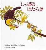 薮内正幸美術館2017年度後期企画展示