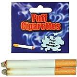 [RINCO]RINCO Fake Puff Cigarettes 24 Pcs Fun Gag Joke Prank by na [並行輸入品]