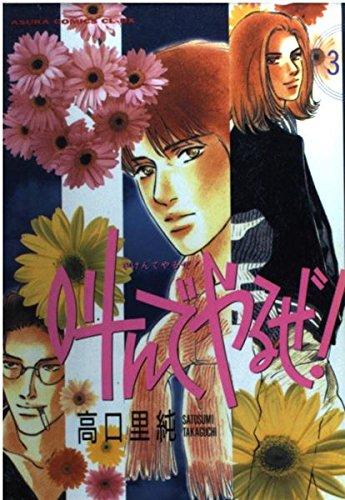 叫んでやるぜ! (3) (Asuka comics CL-DX)の詳細を見る
