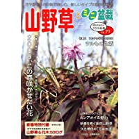 山野草とミニ盆栽 2009年 01月号 [雑誌]