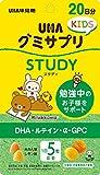 グミサプリ KIDS STUDY 20日分