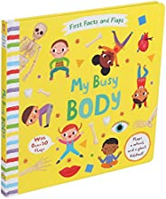 First Facts and Flaps: My Busy Body