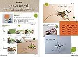 切り紙昆虫館─ハサミで作ろう! (単行本図書) 画像