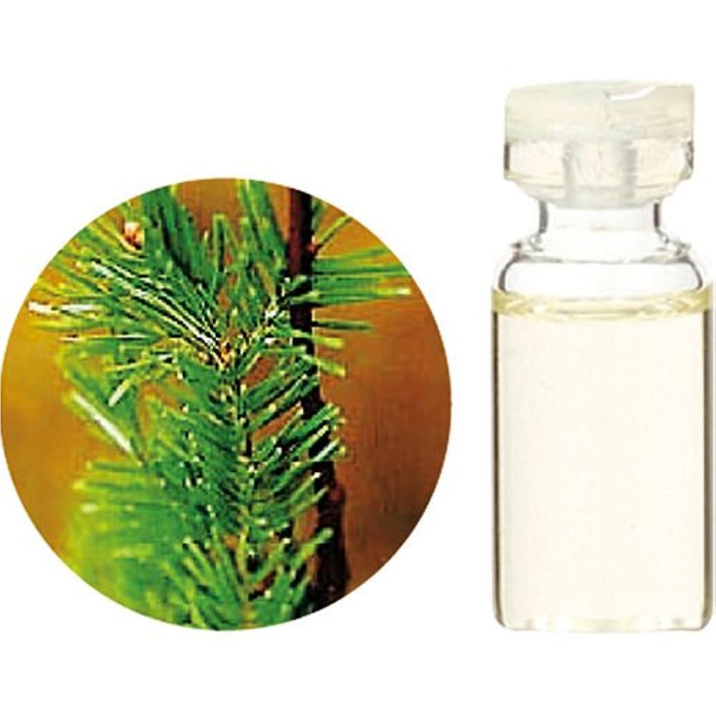 新年遠征前投薬Herbal Life シベリアモミ 10ml