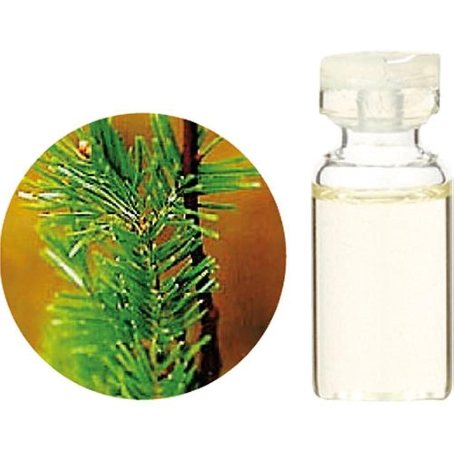 くすぐったい分類する球状Herbal Life シベリアモミ 10ml