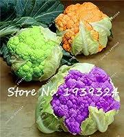 11:100個/バッグミックスカリフラワー(ブロッコリー)の種カリフラワー有機野菜種子用ホームガーデン非Gmo種子