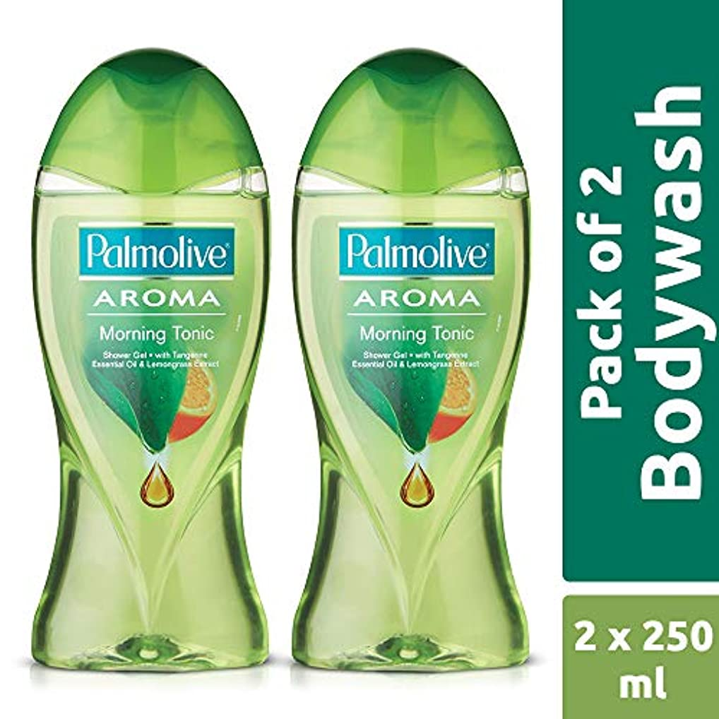 知覚持っている堀Palmolive Bodywash Aroma Morning Tonic Shower Gel - 250ml (Pack of 2)