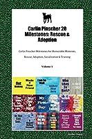 Carlin Pinscher 20 Milestones: Rescue & Adoption: Carlin Pinscher Milestones for Memorable Moments, Rescue, Adoption, Socialization & Training Volume 1